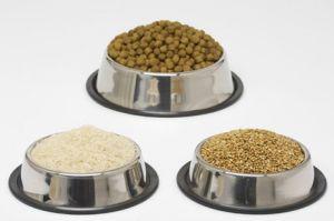 Кучешки храни